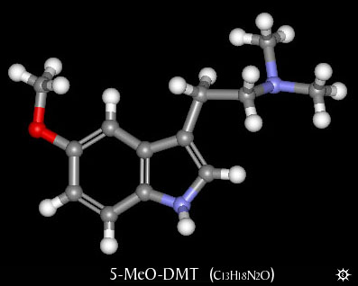 Image result for The Appropriate Use of DMT, Psilocin, Mescalin, Ecstasy in the Preparation for Ascension