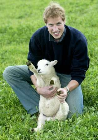 1- Prince.William.lamb